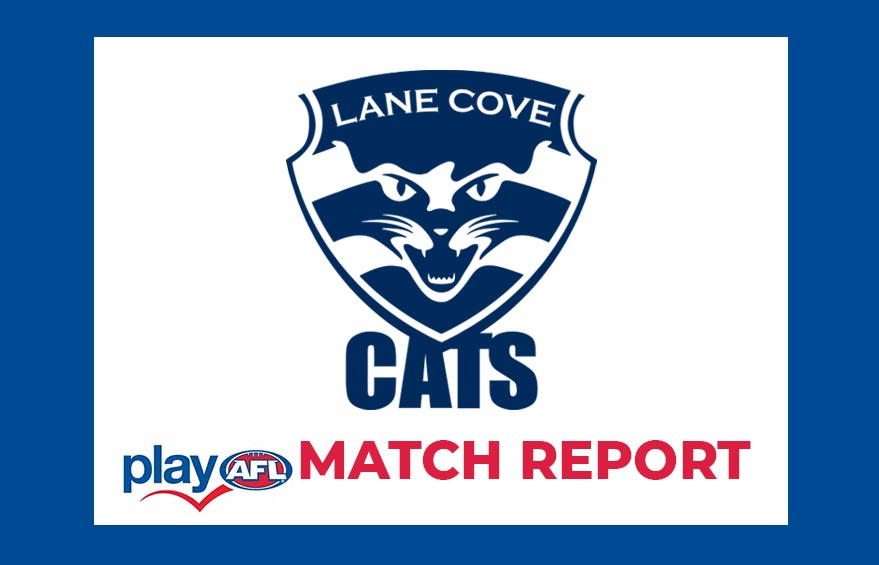 Match Report: Lane Cove Cats U11 Ablett vs Willoughby Wildcats Black, 19th July 2020